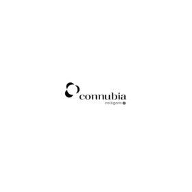 Logo-Connubia-Calligaris-Fornitura-Arredamenti-Gambula-Arredamenti-Sulcis-Sardegna